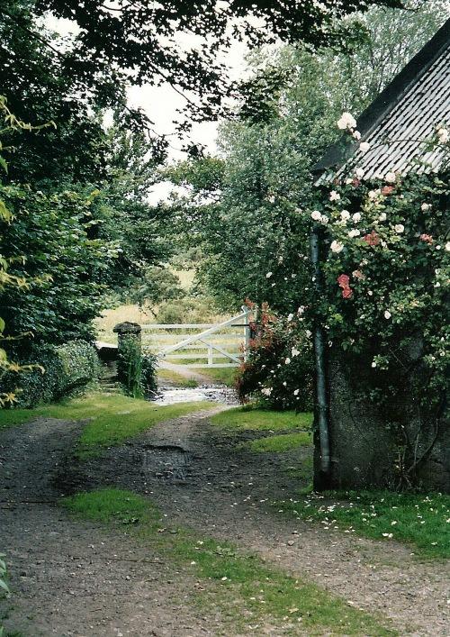 Carlow Ireland, Ireland, Irish farm, Carlow farm, photography