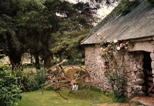 Irish farmyard, County Carlow, Ireland, farmyard